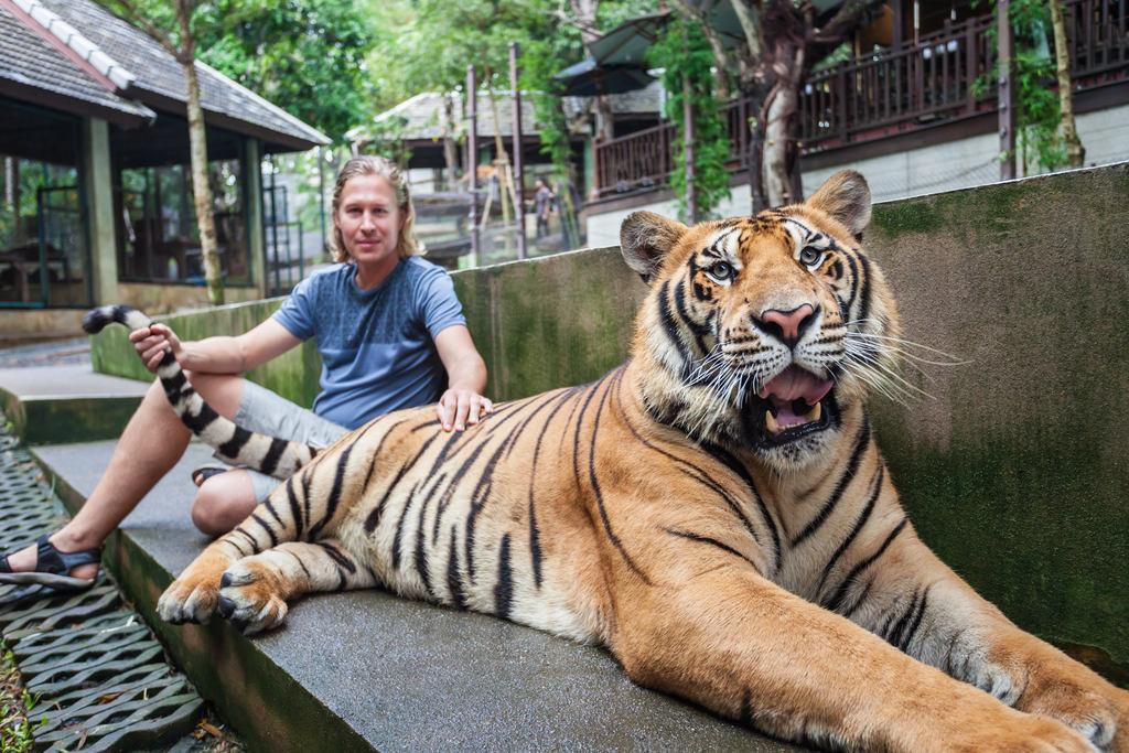 atrakcje-turystyczne-ze-zwierzetami-selfie-z-tygrysem-indonezja-odwaz-sie-wiedziec-fair-travel-event