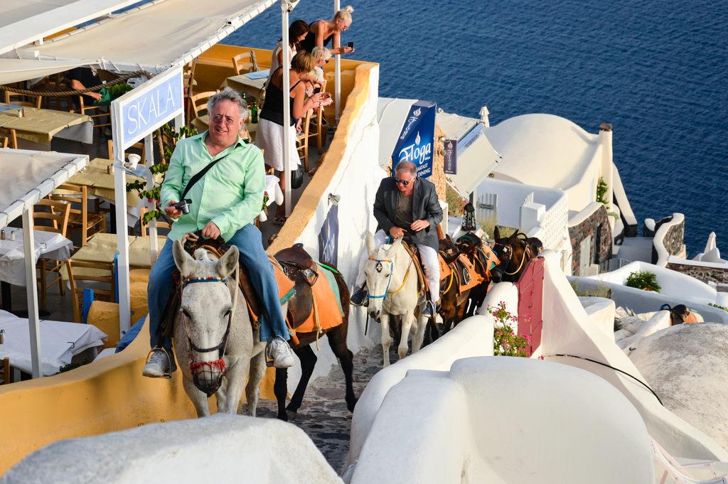 wykorzystywanie-zwierzat-w-turystyce-jazda-na-osiolku-santorini-odwaz-sie-wiedziec-fair-travel-event